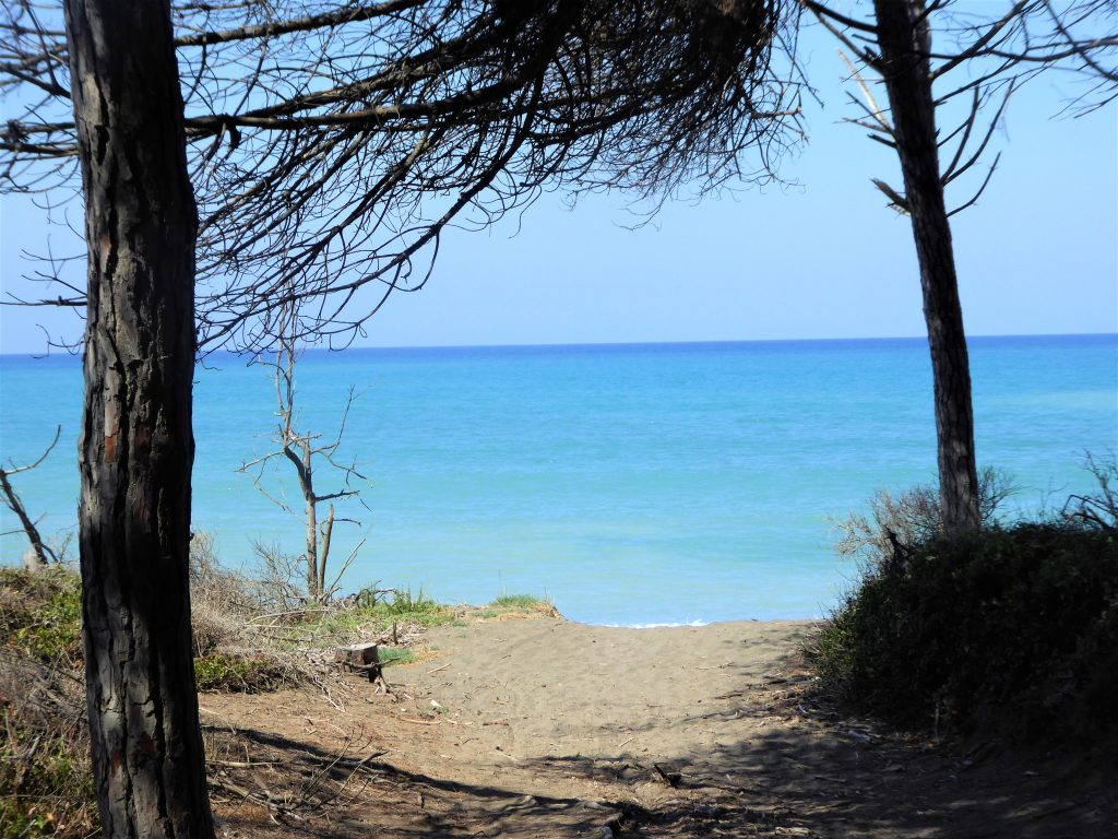 Cecina Beach in der Toskana